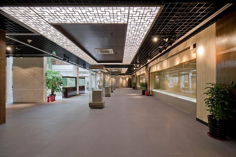 展览区1-NBS STONE
