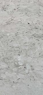 Aurisina Grey