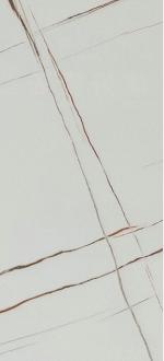 NBS-M009