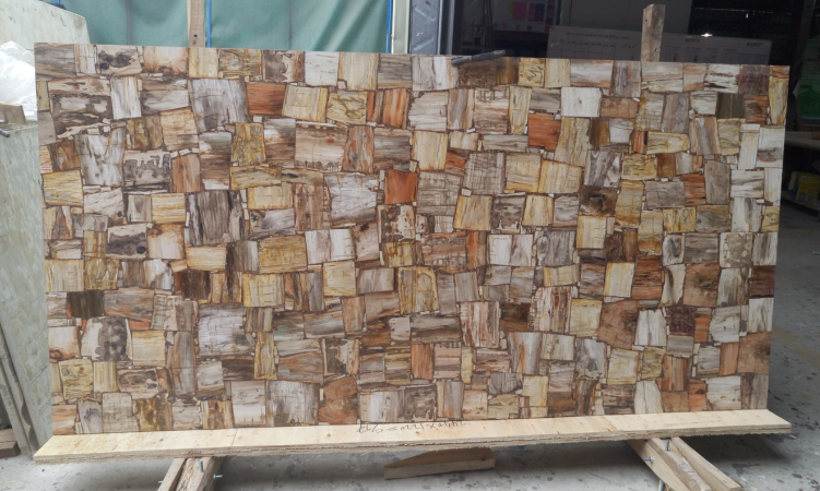 Petrified Wood (3)-NBS STONE